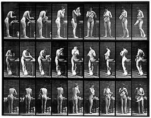Sequenties. Eadweard Muybridge, Animal Locomotion Plate 412. Boston Public Library.
